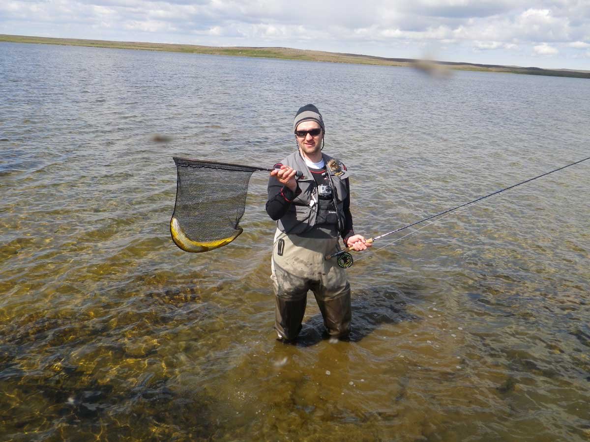 Arnarvatnsheidi - Brown Trout - gofishing.is