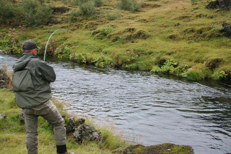 River Galtalaekur - Fly Fishing Tours Iceland - Brown Trout - gofishing.is