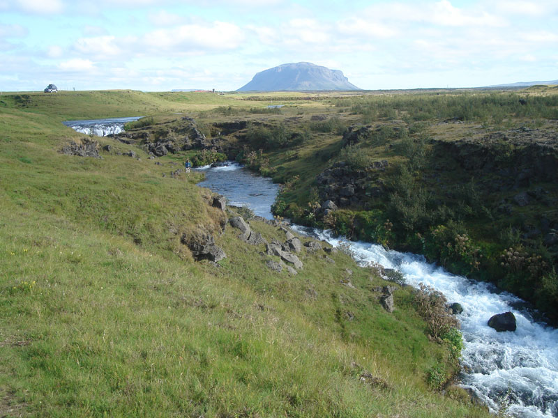 River Galtalaekur - Fly Fishing in Iceland - Brown Trout - gofishing.is