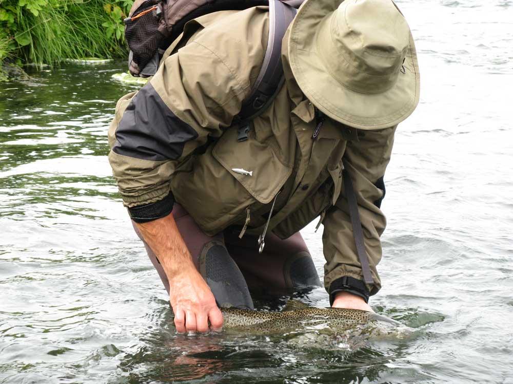 Laxa Myvatn - Brown Trout - gofishing.is