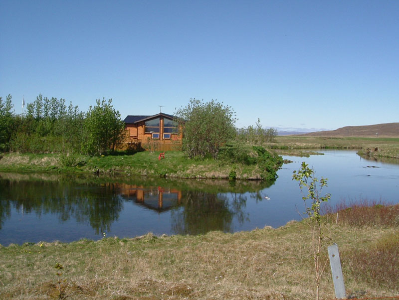 River Minnivallalaekur - Fly Fishing in Iceland - Brown Trout - gofishing.is