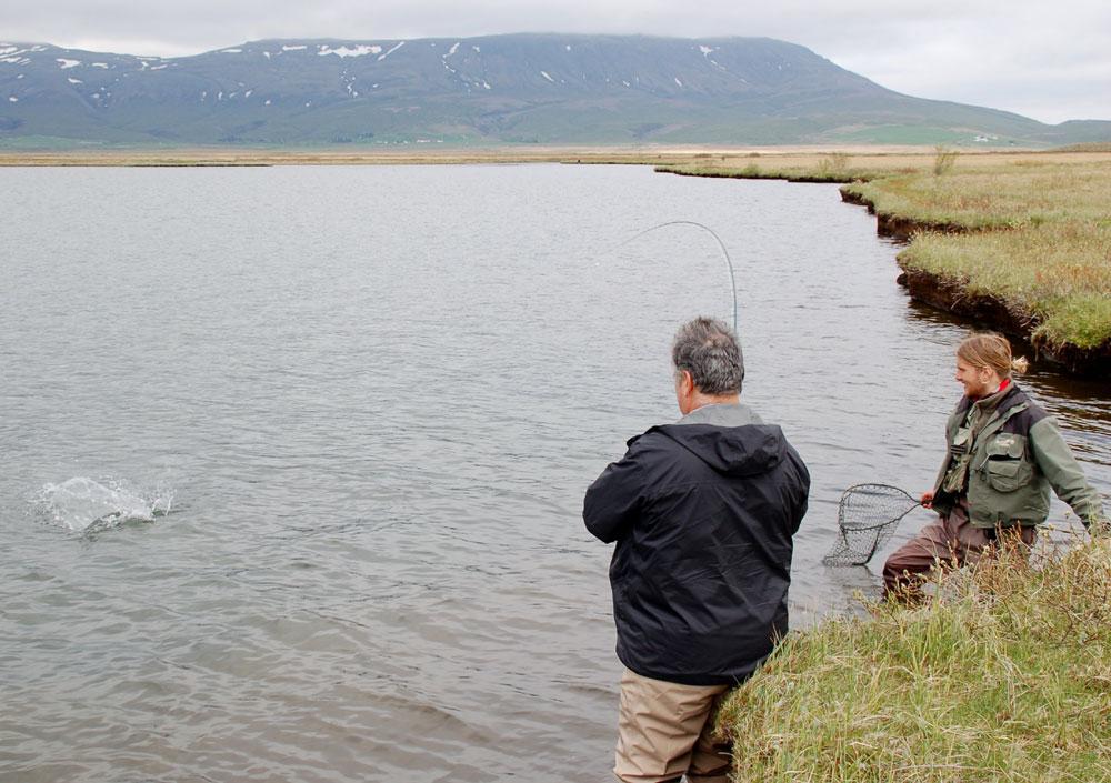 River Holaa - Arctic Char - gofishing.is