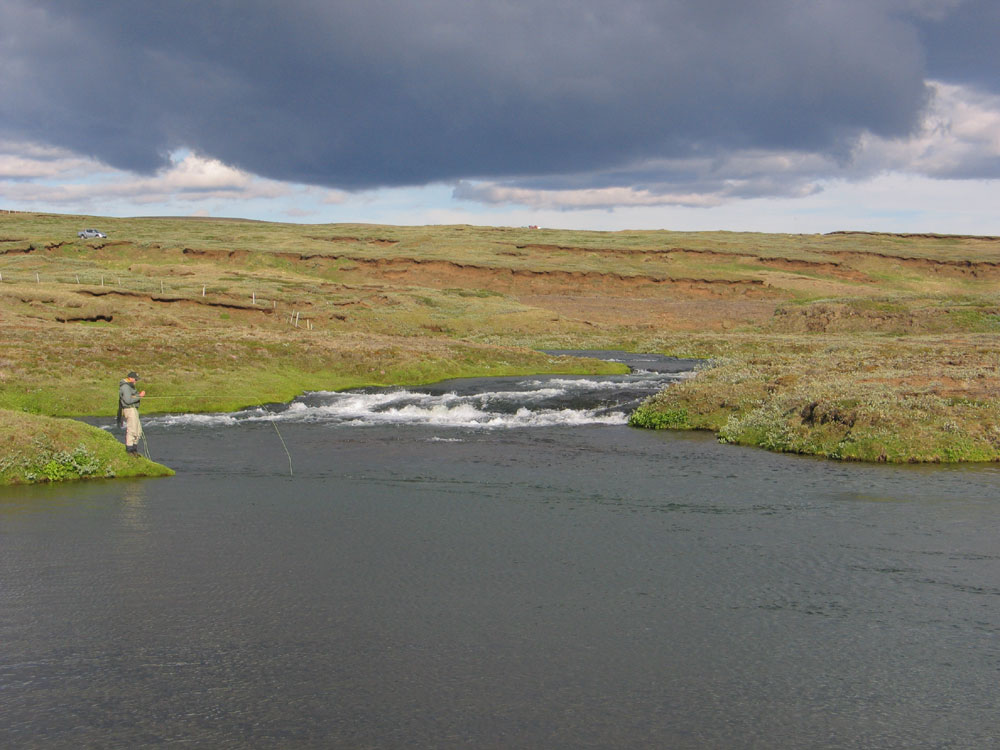 River Svarta in Bardardalur - Fly Fishing Iceland - Brown Trout - gofishing.is