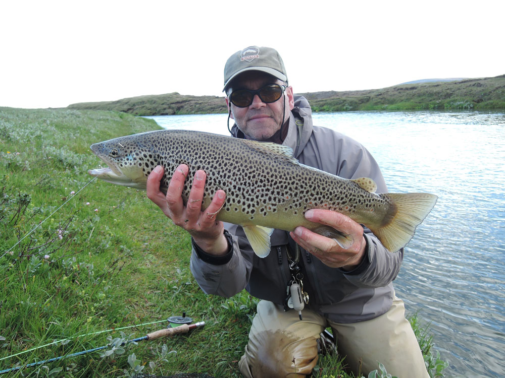 brown trout fishing packages
