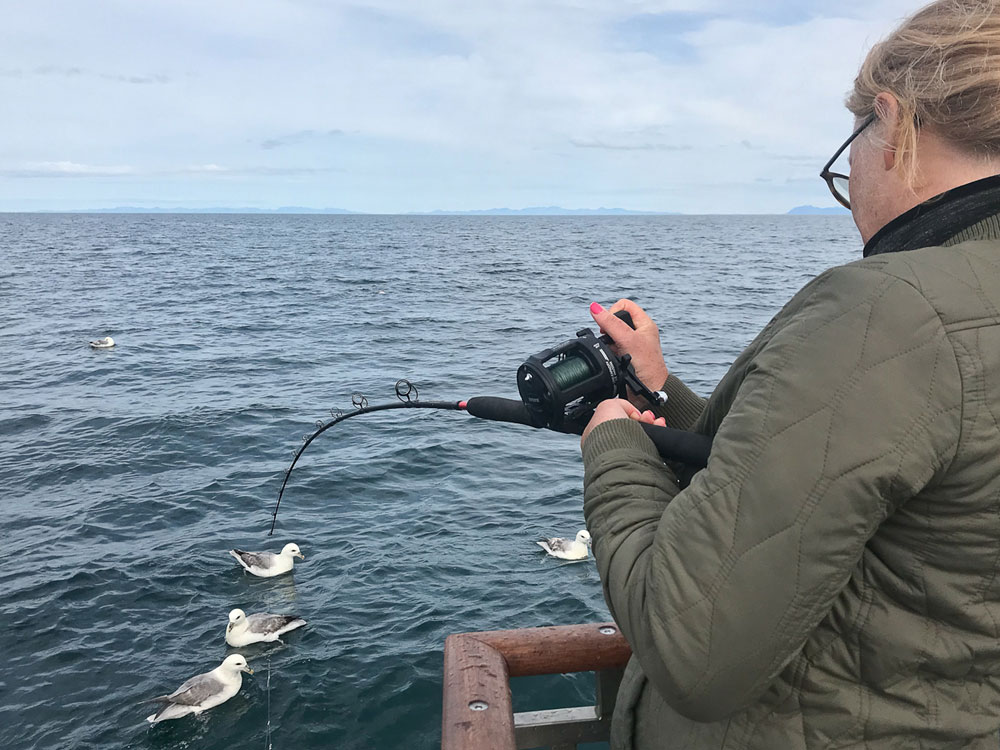 Sea Angling Tours from Reykjavik - gofishing.is