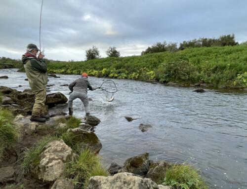 Fishing Day Tours